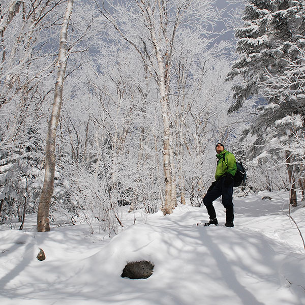 Man looking into trees while snowshoeing